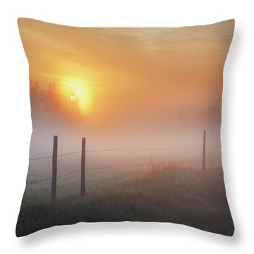 Sunrise Over Morning Pasture Throw Pillow