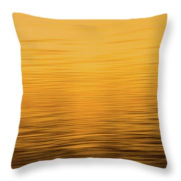 Throw Pillow featuring the photograph Sunrise Reflections Abstract by Dan Sproul