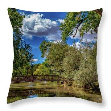 Sunrise Springs Throw Pillow
