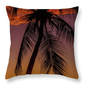 Sunset At The Palm Throw Pillow