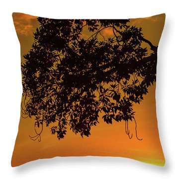 Sunset By The Pier Throw Pillow