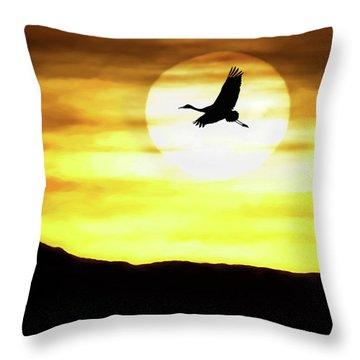 Sunset Flyway Throw Pillow