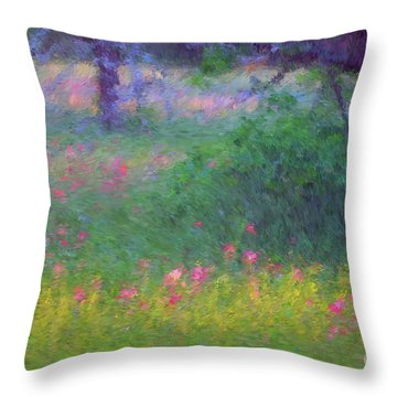 Sunset In Flower Meadow Throw Pillow
