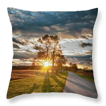Sunset In The Tree Throw Pillow