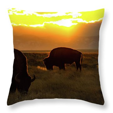 Sunset On The Plains Of Colorado Throw Pillow