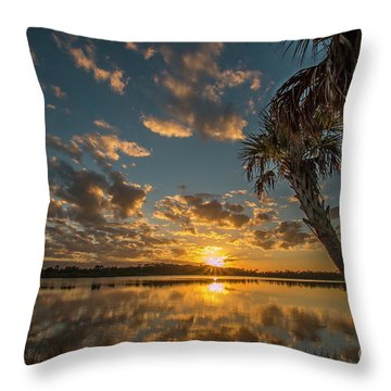 Throw Pillow featuring the photograph Sunset On The Pond by Tom Claud