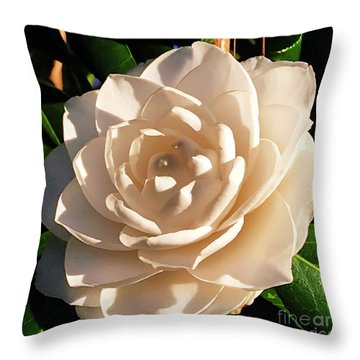 Throw Pillow featuring the photograph Sunset Sea Foam by Rick Locke