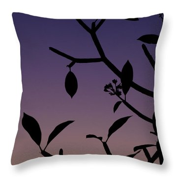 Throw Pillow featuring the photograph Sunset Silhouette by Nicole Young