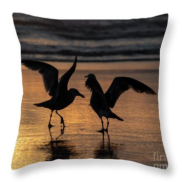 Sunset Squabble Throw Pillow