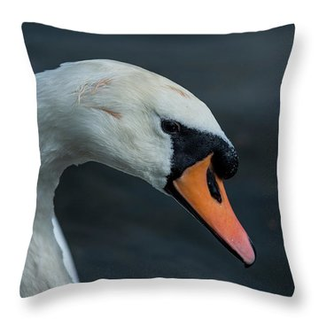 Throw Pillow featuring the photograph Swan Head Close Up On Blue Background by Scott Lyons