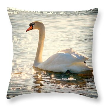 Swan On Golden Waters Throw Pillow