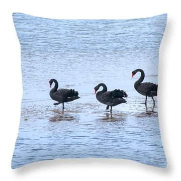 Swans On Parade Throw Pillow
