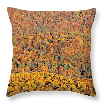 Throw Pillow featuring the photograph Sweeping Beauty by Candice Trimble