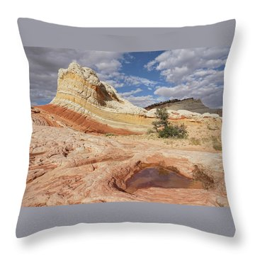 Sweeping Structures In Sandstone Throw Pillow