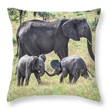 Sweet Babies Throw Pillow