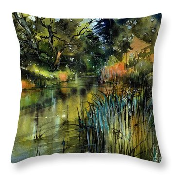 Asheville Throw Pillows