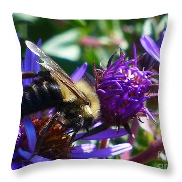 Throw Pillow featuring the photograph Sweet Harvest by Rosanne Licciardi