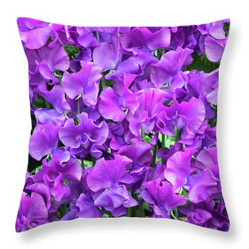 Throw Pillow featuring the photograph Sweet Pea Katie Alice Flowers by Tim Gainey