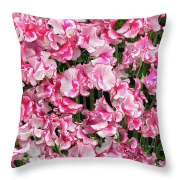 Throw Pillow featuring the photograph Sweet Pea Linda Flowers by Tim Gainey