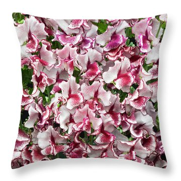 Throw Pillow featuring the photograph Sweet Pea Lisa Marie Flowers by Tim Gainey