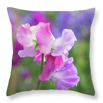 Throw Pillow featuring the photograph Sweet Pea Prima Ballerina Flower Portrait by Tim Gainey