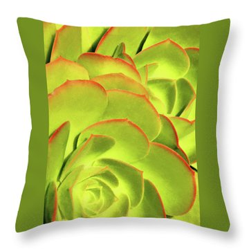 Throw Pillow featuring the photograph Sweet Succulents II by Leda Robertson