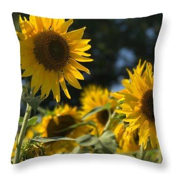 Sweet Sunflowers Throw Pillow