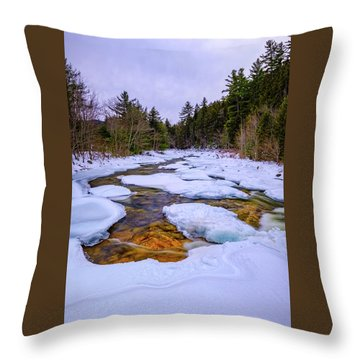 Swift River Winter  Throw Pillow