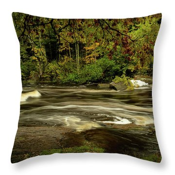 Swirling River Throw Pillow