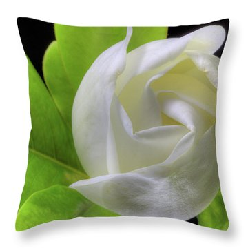 Swirling Scents Throw Pillow