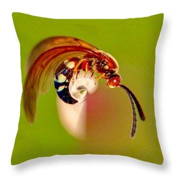 Swirly Wasp Throw Pillow