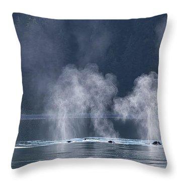 Synchronized Swimming Humpback Whales Alaska Throw Pillow