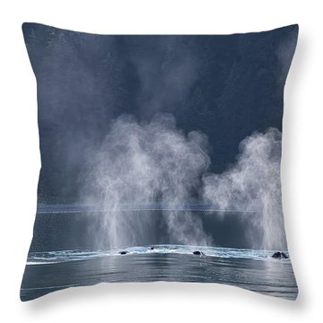 Throw Pillow featuring the photograph Synchronized Swimming Humpback Whales Alaska by Nathan Bush