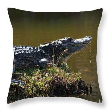 Taking In The Sun Throw Pillow