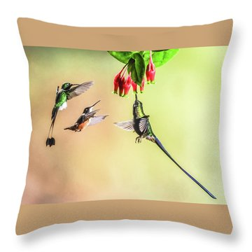 Taking Turns Throw Pillow