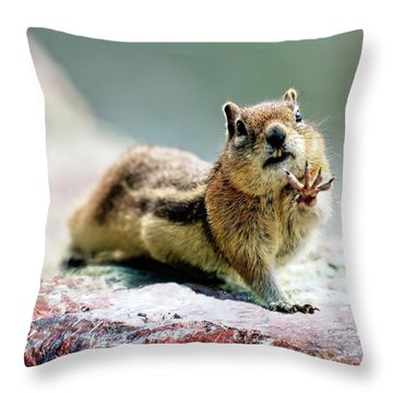 Talk To The Hand By Olena Art Throw Pillow