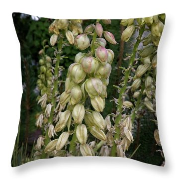 Throw Pillow featuring the photograph Tall And Standing by Jon Burch Photography