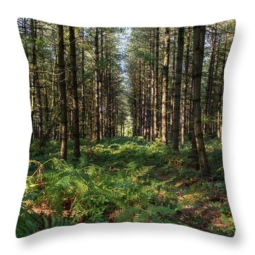 Tall Trees In Sherwood Forest Throw Pillow