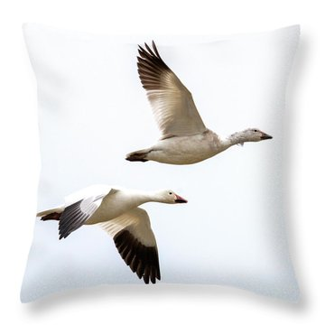 Tandem Flight Throw Pillow