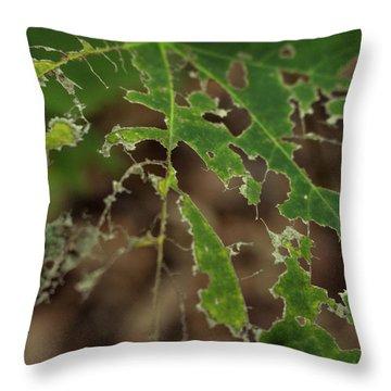 Tasty Tree Throw Pillow