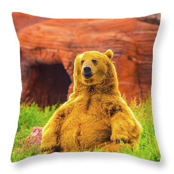 Throw Pillow featuring the photograph Teddy Bear by Dheeraj Mutha