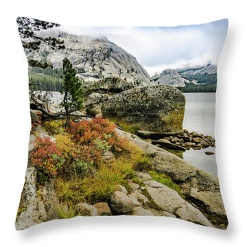 Tenaya View Throw Pillow