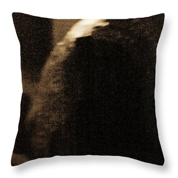 Throw Pillow featuring the photograph Tenderness by Catherine Sobredo