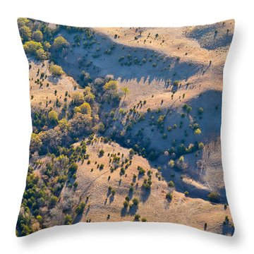 Throw Pillow featuring the photograph Terra by Carl Young