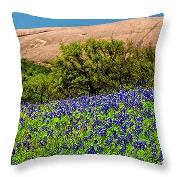 Texas Bluebonnets And Enchanted Rock 2016 Throw Pillow