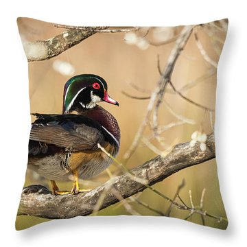 Texas Wood Duck Throw Pillow