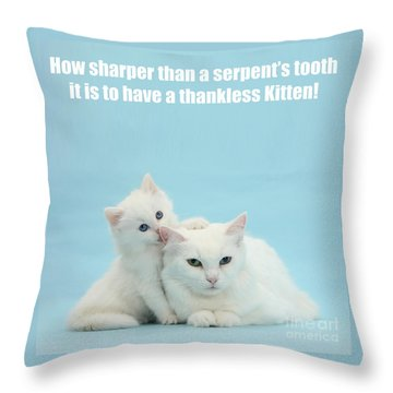 Throw Pillow featuring the photograph Thankless Kitten by Warren Photographic