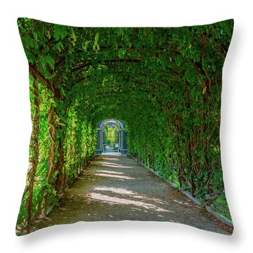 The Alley Of The Ivy Throw Pillow