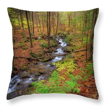 Throw Pillow featuring the photograph The Autumn Forest by Bill Wakeley