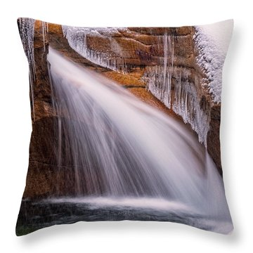 The Basin, Close Up In A Winter Storm Throw Pillow
